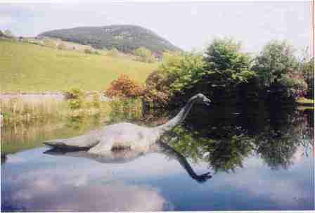 Lago y Tarot