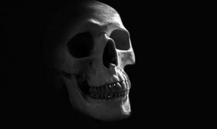 brujería negra